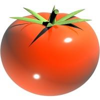 tomato loader 3d model