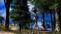3d skeleton cave model