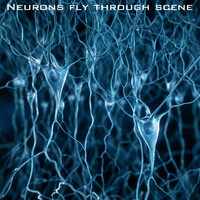 Pyramidal-Neurons-scene