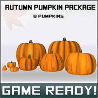 autumn pumpkins package 3d model