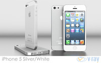 Apple iPhone 5 White / Silver Vray