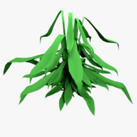 3d plant root