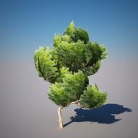 3d model tree materials