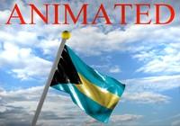 bahamas flag 3d model