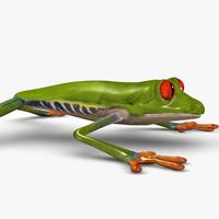 3d model tree frog