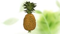 3d pine apple