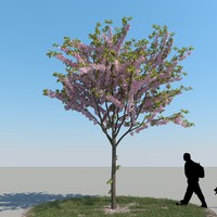 3ds max realistic cherry tree