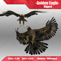 golden eagle 3d model