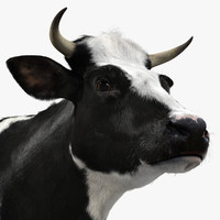 3ds max holstein cow fur