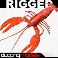 3d dugm02 lobster
