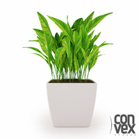 Potted Plants_04
