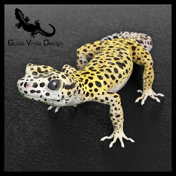 Gecko_1_Lg.jpg