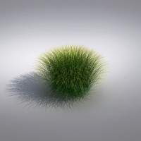3ds max ornamental grass