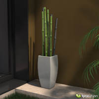 bamboo canes 3d model
