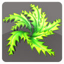 fern shrubs 3d model