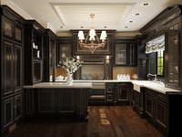 3d max kitchen downsview