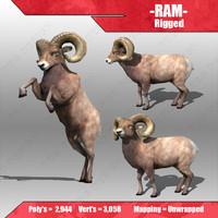 3d ram model