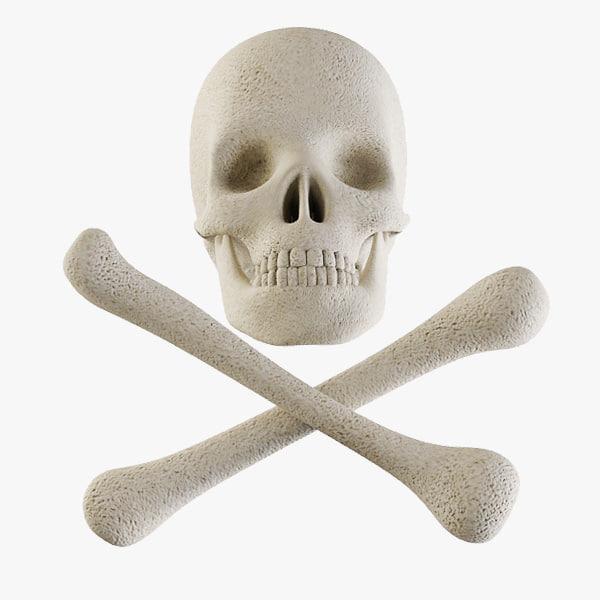 Skull Thumb.jpg