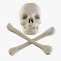 3d model skull crossbones