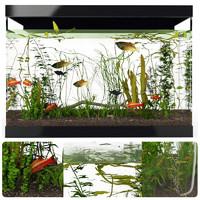 3ds max aquarium