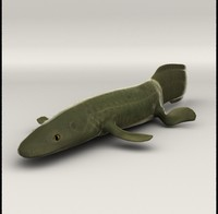 lwo ichthyostega
