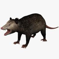 3ds max possum