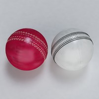 Cricket Ball Standard and Warn
