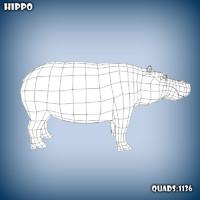 3d base mesh hippo