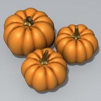 maya pumpkin