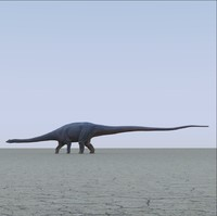 3d model diplodocus dinosaur