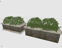 plant flower bed obj