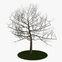 tree 6 branches 3d obj