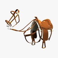 Western Saddle & Bridle