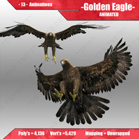 golden eagle animations 3d model