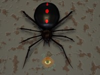 3d model 5 black widow spider
