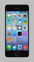 Iphone 5S gray