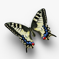 3d model machaon