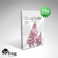 3d model flowers 3 plant xfrogplants