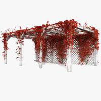 Wooden Autumn Red Pergola With Ivy Plant