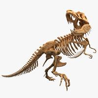 dinosaur t-rex bones skeleton lwo
