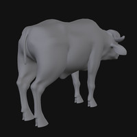 max buffalo