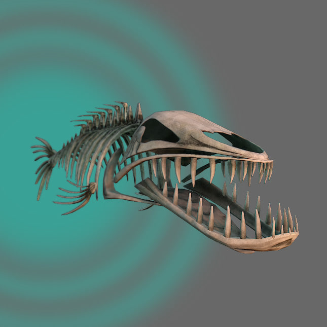 fish_bone_sign.jpg