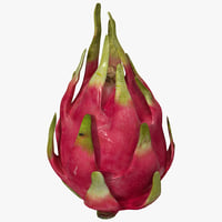 3d dragonfruit fruit model