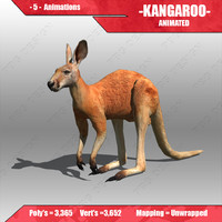 3d model kangaroo animations