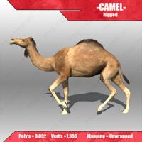 3d model camel