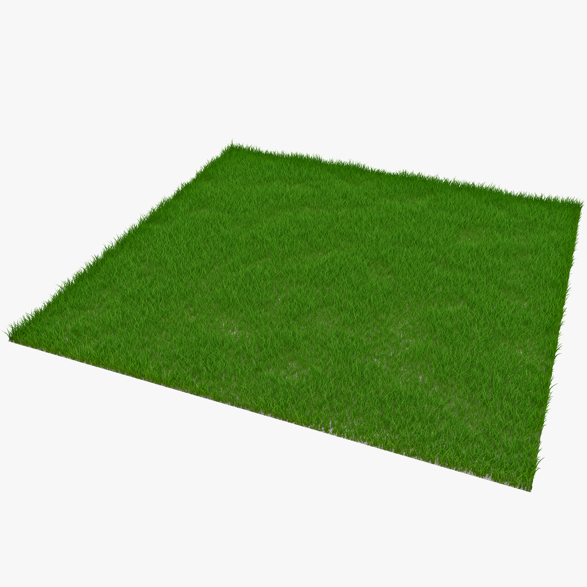 Rectangular Grass Patch_1.jpg
