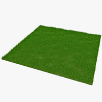 3d rectangular grass patch