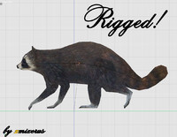 rigged racoon obj