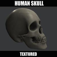 human skull obj