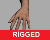 3d hand arm